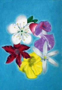 kacflower
